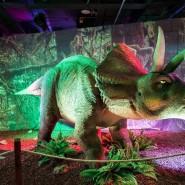 Выставка роботизированных динозавров в Сочи Парке фотографии