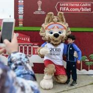 50 дней до старта Чемпионата мира по футболу FIFA 2018 фотографии