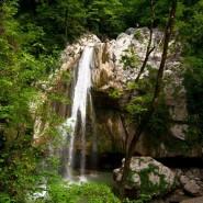 Фестиваль Сочинского национального парка 2018 фотографии
