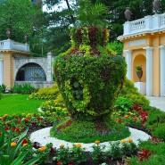 Парк Дендрарий фотографии