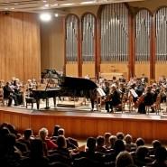 Концерт «Венские вечера» 2018 фотографии