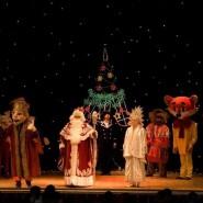 Шоу-спектакль «Новогодние приключения в 3/13 царстве» 2018 фотографии