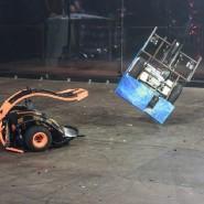 Международная битва роботов 2017 фотографии