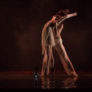 Вечер балета фестиваля искусств Юрия Башмета 2019 фотографии