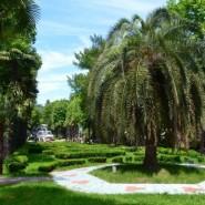 Парк «Ривьера» фотографии
