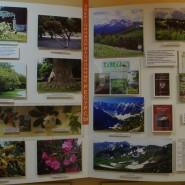Выставка «Рекреационные ресурсы Сочинского региона» фотографии