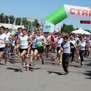 «Зеленый марафон» в Сочи 2019 фотографии