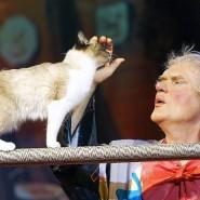 Шоу театра кошек Юрия Куклачева 2018 фотографии