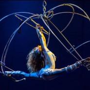 Цирковая программа «Планета цирк» 2018 фотографии
