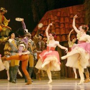 Выставка «Волшебный мир балета» фотографии