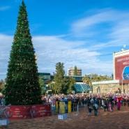 Новогодние мероприятия в районах Сочи 2017/18 фотографии