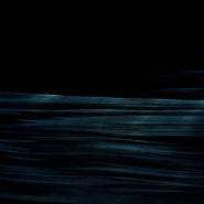 Балет «Лебединое озеро» в парке «Сириус» 2019 фотографии