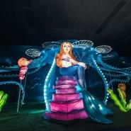 Крытый всесезонный парк иллюминаций «Вау Парк» фотографии