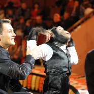 Цирковое шоу «Марица и Дан Запашные» 2017 фотографии