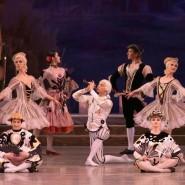 Балет «Щелкунчик» в Сочи 2021 фотографии