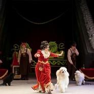 Сочинский цирк фотографии