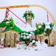 Зима в Сочи Парке 2021 фотографии