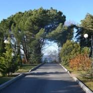 Парк имени Фрунзе фотографии