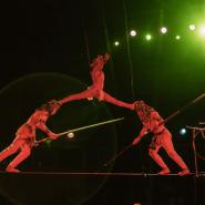 Цирковое шоу «Джемелли» 2017 фотографии