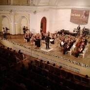 Концерт «Музыка Вены» 2017 фотографии