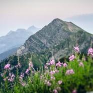 Арт-фестиваль «Цветные Горы» 2018 фотографии