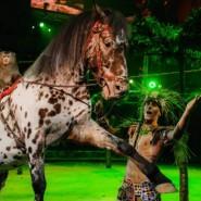 Цирковое шоу «Королевский цирк Гии Эрадзе» 2018 фотографии