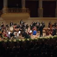 Концерт «Виват, Штраус!» 2020 фотографии