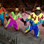 Цирковое шоу шимпанзе «Бинго-Бонго» 2019 фотографии