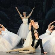 Гастроли Театра классического балета «Moscow State Ballet» 2020 фотографии