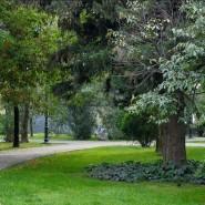 Парк «Комсомольский сквер» фотографии