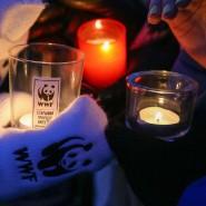 Акция «Час Земли» в Сочи 2019 фотографии