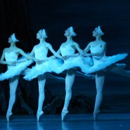 Балет «Лебединое озеро» в Зимнем театре 2019 фотографии