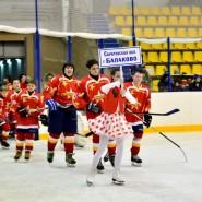 Хоккейный турнир «Золотая шайба» 2017 фотографии