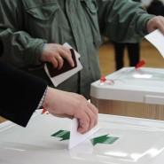 День выборов в Адлерском районе 2018 фотографии