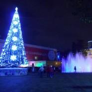 Новый год на площади Флага 2019/20 фотографии