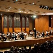 Концерт «Под сводами храма» 2017 фотографии