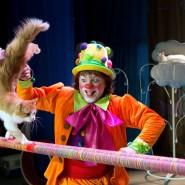 Спектакль «Щелкунчик и кошки» 2020 фотографии