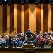 Концерт «Музыкальный фейерверк» 2017 фотографии