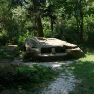 Пикниковая зона «В тени секвой» фотографии