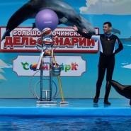 Большой Сочинский Дельфинарий фотографии