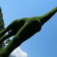 Парк «Зеленая планета» фотографии
