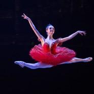 Гала-концерт балета к 200-летию Мариуса Петипа 2018 фотографии