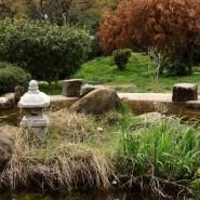 Сад русско-японской дружбы фотографии