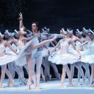 Балет «Лебединое озеро» в Зимнем театре 2018 фотографии