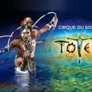 Шоу Cirque du Soleil «Totem» 2017 фотографии