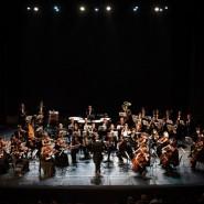 Концерт «Бетховен. Золотая коллекция» 2020 фотографии