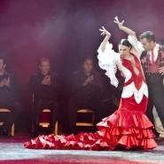 Фламенко-шоу «Легенда о Ромео и Джульетте» 2020 фотографии