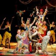 Оперетта «Принцесса цирка» 2017 фотографии