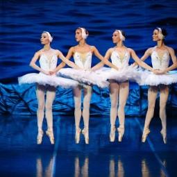 Балет «Лебединое озеро» в Сочи 2020