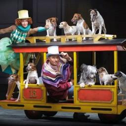 Цирковое шоу «Девочка и слон» 2021
